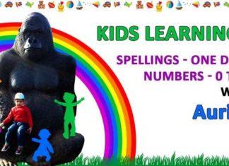 Kids One Digit Numbers Educational Video Aurius